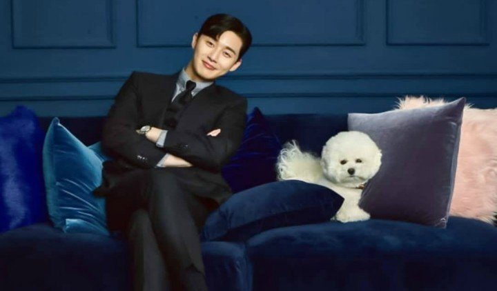 7 Korean Actor with Their Lovely Pets
