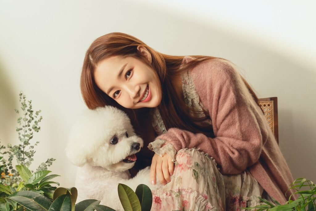 Korean Actress with Their Lovely Pets