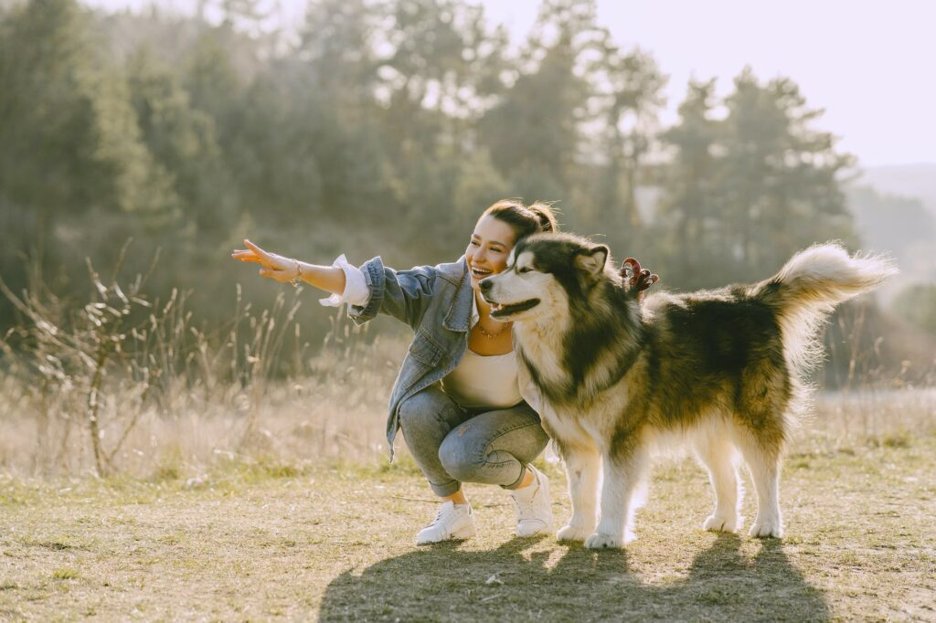 Dogs Can Actually Read Your Emotions   A woman pointing something to her dog in the field