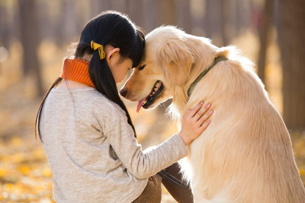 7 Ways To Tell Your Dog You Love Him/Her That They Can Understand
