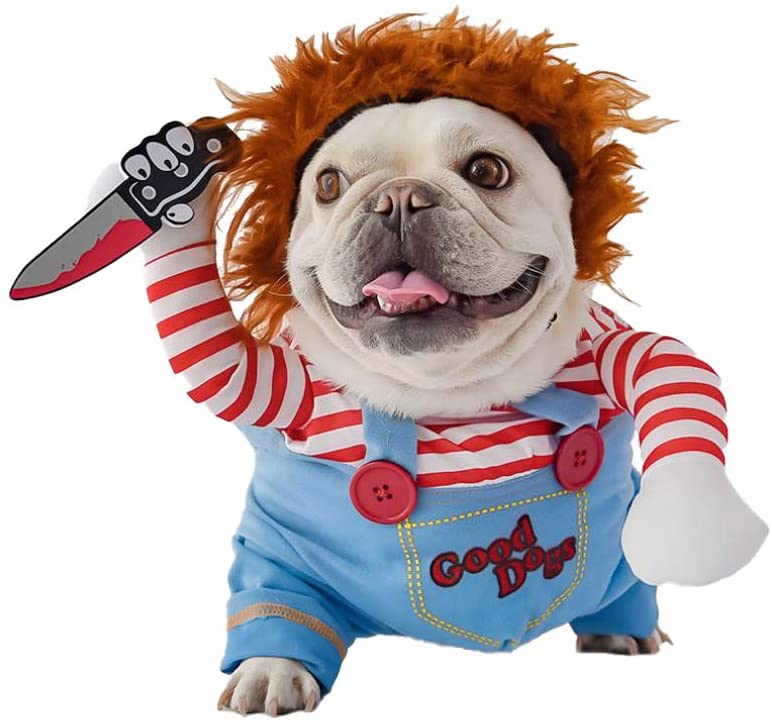 A dog wearing Deadly Doll Costume