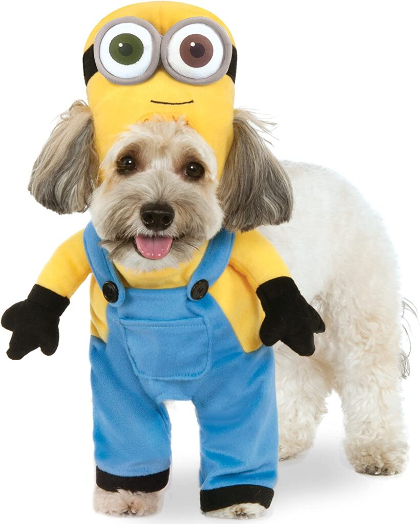 Dog wearing a Minion Bob Arms Suit