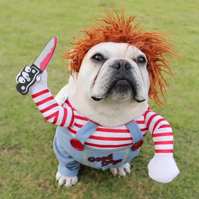 Dog Halloween Costumes Ideas For 2020