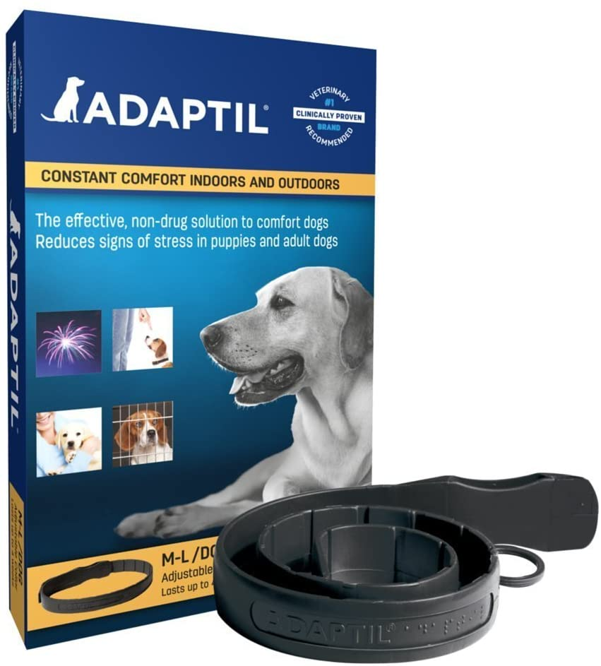 Dog collar to Help Your Dog Stay Calm During Thunderstorms