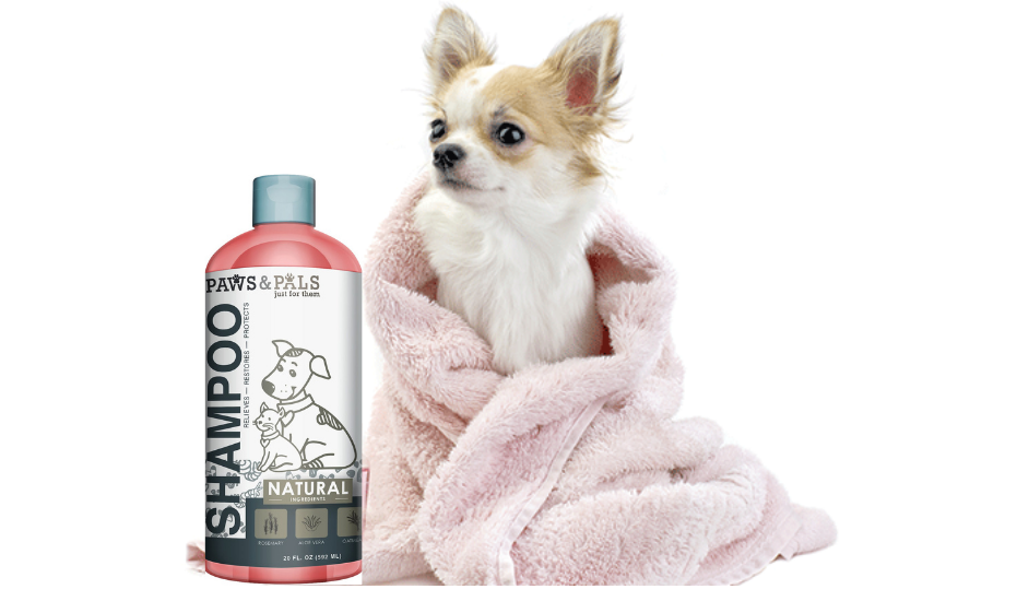 PThe Best Dog Grooming Products of 2021 Paws & Pals Dog Grooming Products