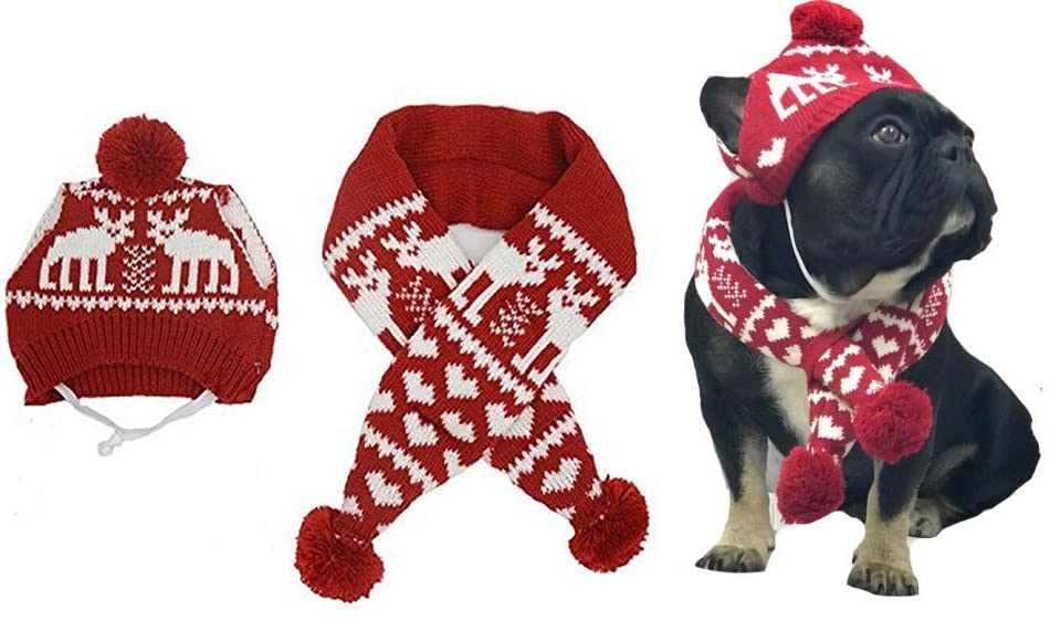 Best Christmas Dog Costumes  red hat and scarf