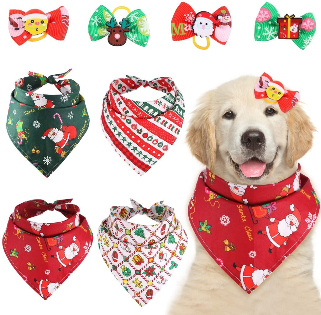 Best Christmas Gift for Dog