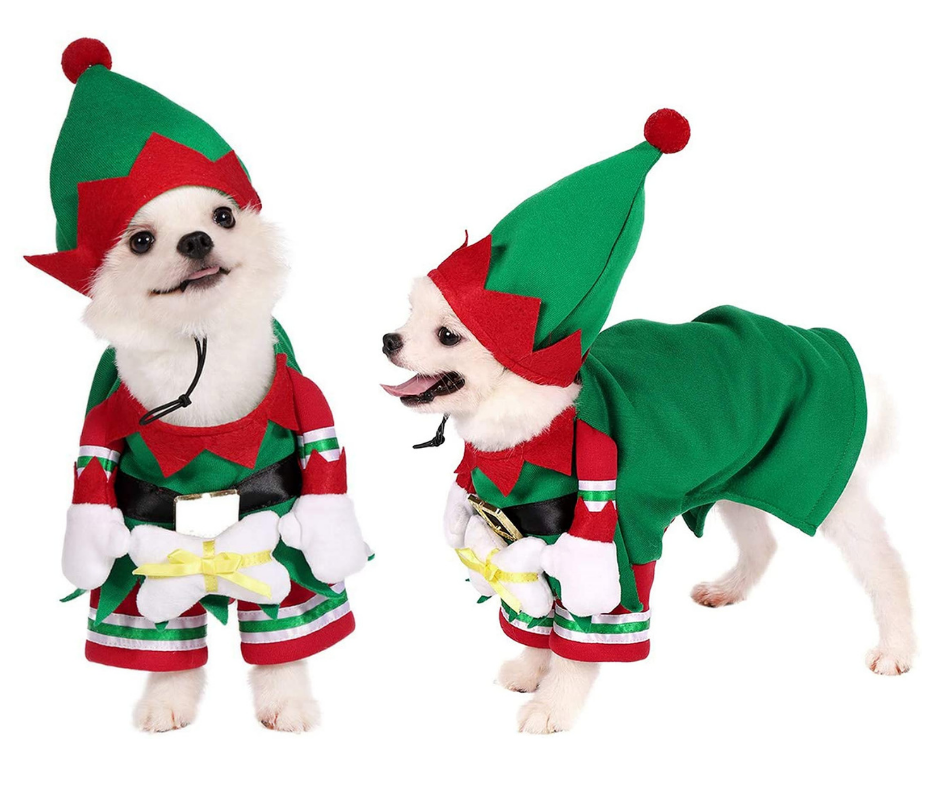 Best Christmas Dog Costumes elf