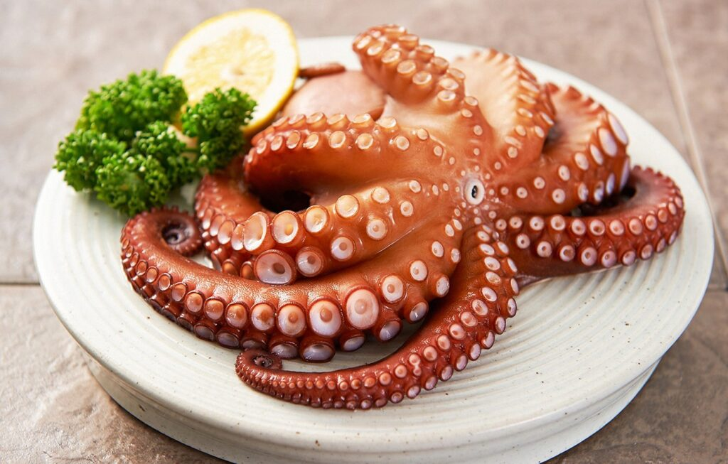 Can Dogs Eat Octopus?