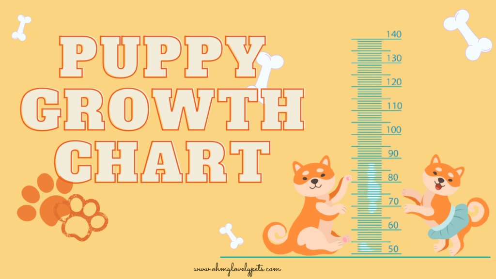 Newborn Puppies growth chart