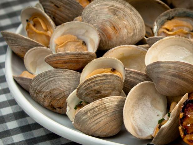 Can Dogs Eat Clams?